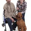 Senior couple with a dog — Stock Photo #20399465