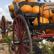 Carriage loaded with pumpkins — Stock Photo