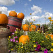 Seasonal garden decorations — Stock Photo