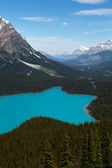 Mountain lake surrounded by forest — Stock Photo