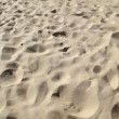 Sand dunes at beach — Stock Photo #12654348