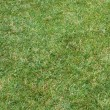Beautiful green lawns — Stock Photo #12880597