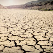Riverbed in drought - Stock Photo