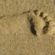 Photo of a lonely footprint - 图库照片