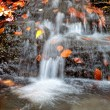 Cascading water of a stream - Stock Photo
