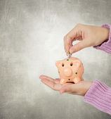 Hand inserting a coin in a piggy bank — Stock Photo