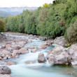 Nice river with clear water flowing — Stock Photo