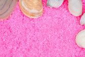 Clam shells on pink bath salts — Stock Photo