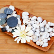 Tray decorated with river stones and shells — Stock Photo