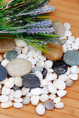 River rocks with lavender flowers — Stock Photo