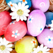 Easter eggs decorated with daisies tucked in a basket — Stock Photo #44212759
