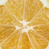 オレンジ色の写真をクローズ アップ — ストック写真