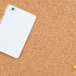 Corkboard with blank paper punch — Stock Photo #9437699