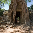 Ta Som Temple, Angkor, Cambodia - Stock Photo