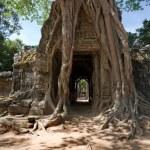 Ta Som Temple, Angkor, Cambodia — Stock Photo #17149061