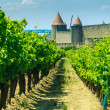 Medieval town of Carcassonne and vineyards - Stock Photo