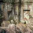 Ta Prohm Temple, Angkor, Cambodia — Stock Photo #17149483