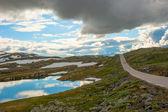 живописная дорога 55, норвегия — Стоковое фото