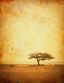 Grunge image of a tree on a vintage paper — Stock Photo