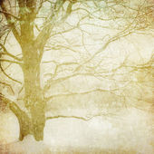 Grunge image of winter landscape — Foto de Stock