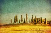 Vintage tuscan landscape — Stock Photo