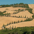 Typical tuscan landscape — Stock Photo #17150115