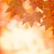 Grunge background with autumn leaves — Stock Photo #17150189
