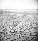 Grunge image of desert landscape — Stock Photo