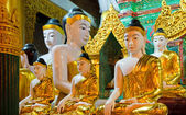 Buddha statues at Shwedagon Pagoda, Yangon, Myanmar — Stock Photo