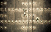 Close-up image of ancient doors — Foto Stock