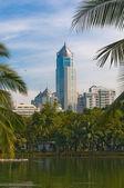 Modern city skyline, skyscrapers over green park — Stock Photo