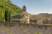 Abadia de senanque, provence, frança — Foto Stock