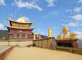 Songzanlin tibetan monastery, shangri-la, china — Stock Photo