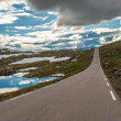 Scenic 55 road, Norway — Stock Photo