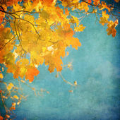 Grunge background with autumn leaves — Stockfoto