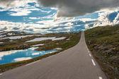 Doğal 55 road, norveç — Stok fotoğraf