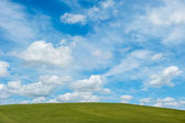 Green field and blue cloudy sky background — Stock Photo