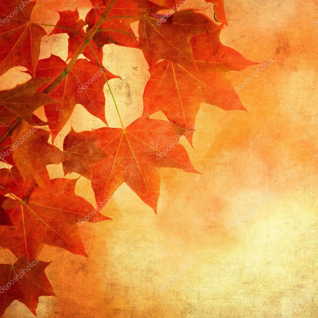 Grunge background with autumn leaves — Stock Photo #17688275
