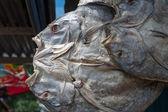 Getrockneter fisch, sulawesi, indonesien — Stockfoto