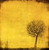 グランジのヴィンテージ紙の上の木の画像 — ストック写真