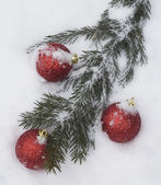 Christmas tree branch with decorations covered with snow — Stock Photo