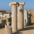 Ruins of Delos, Greece - Stock Photo