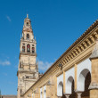 Mezquitcathedral, Cordoba, Spain — Stock Photo #24032849
