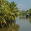 Stock Photo: Backwaters of Kerala, India