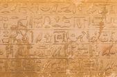 Hieróglifos egípcios de saqqarah, cairo — Foto Stock