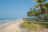 Varkala strand, kerala, india — Stockfoto