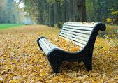 秋の公園のベンチ — ストック写真