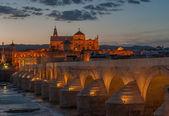 Mezquita cathedral and roman bridge, Cordoba, Spain — Stock Photo
