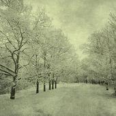 冬季景观的 grunge 形象 — 图库照片