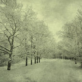 Grunge image of winter landscape — Stockfoto